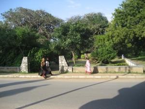 Tanga Town G Cem IMG_5761 (24)