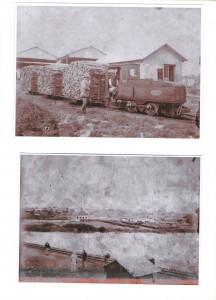 pics 3